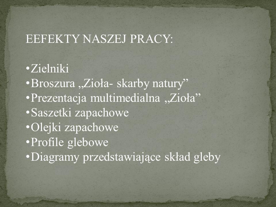 """EEFEKTY NASZEJ PRACY:Zielniki. Broszura """"Zioła- skarby natury Prezentacja multimedialna """"Zioła Saszetki zapachowe."""