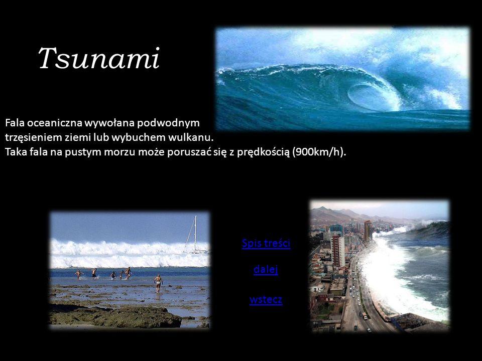 Tsunami Fala oceaniczna wywołana podwodnym