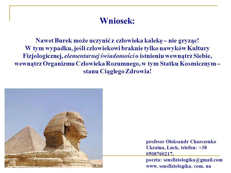 Nawet Burek może uczynić z człowieka kalekę – nie gryząc!