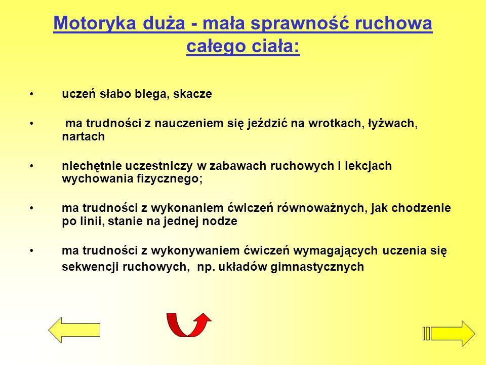 Motoryka duża - mała sprawność ruchowa całego ciała: