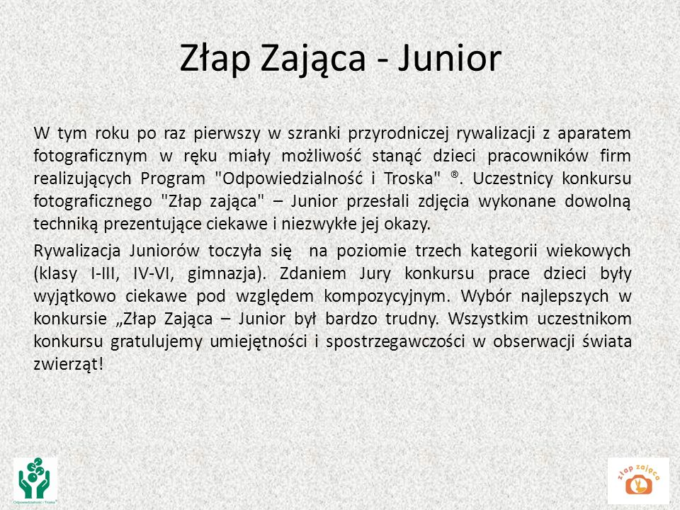 Złap Zająca - Junior