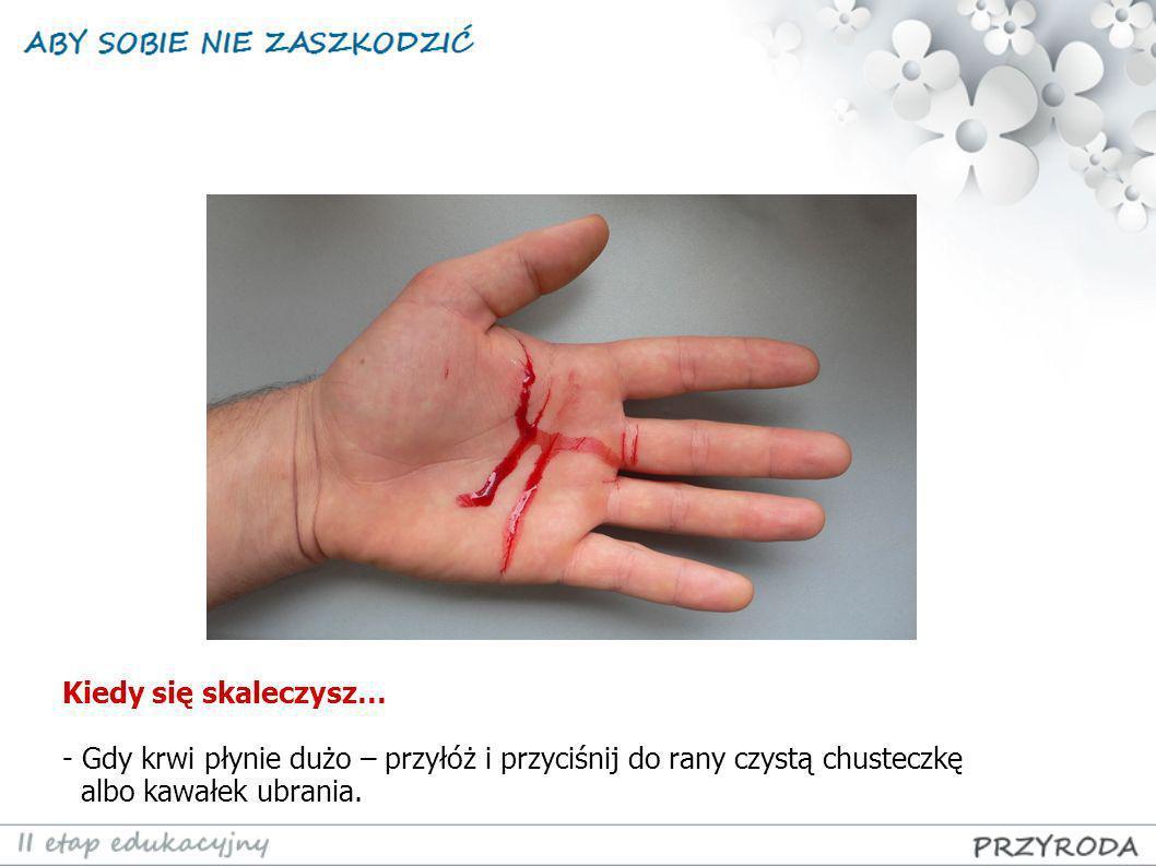Kiedy się skaleczysz… Gdy krwi płynie dużo – przyłóż i przyciśnij do rany czystą chusteczkę.