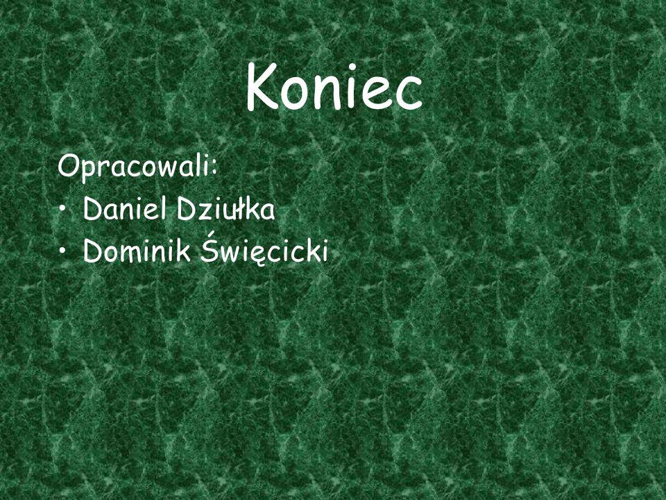 Koniec Opracowali: Daniel Dziułka Dominik Święcicki
