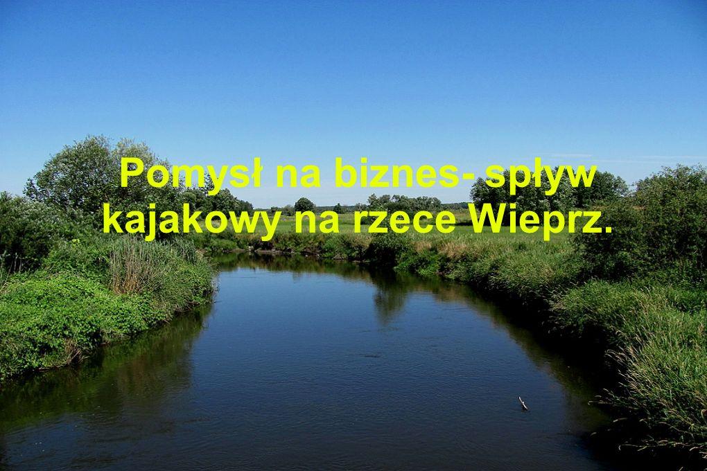 Pomysł na biznes- spływ kajakowy na rzece Wieprz.