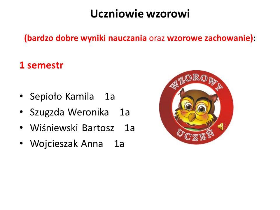 1 semestr Sepioło Kamila 1a Szugzda Weronika 1a Wiśniewski Bartosz 1a