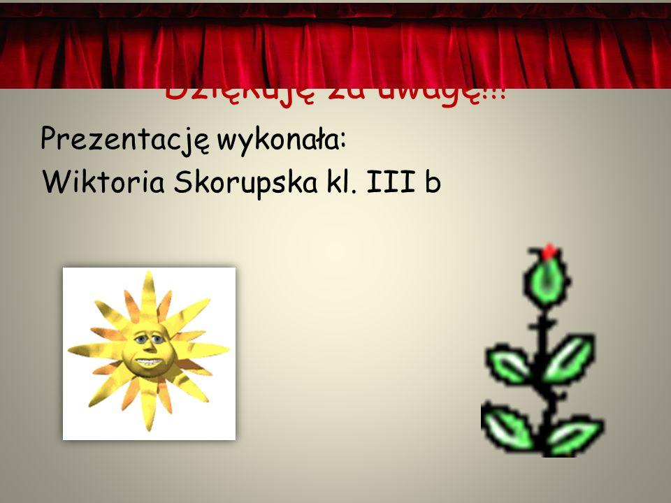 Dziękuję za uwagę!!! Prezentację wykonała: Wiktoria Skorupska kl. III b