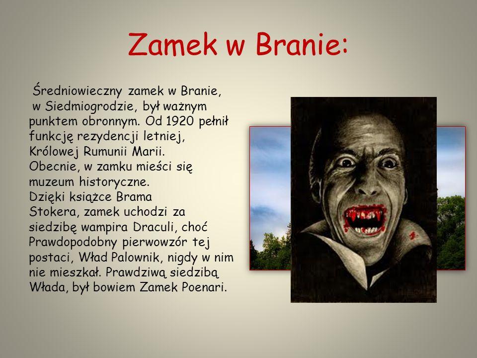 Zamek w Branie: