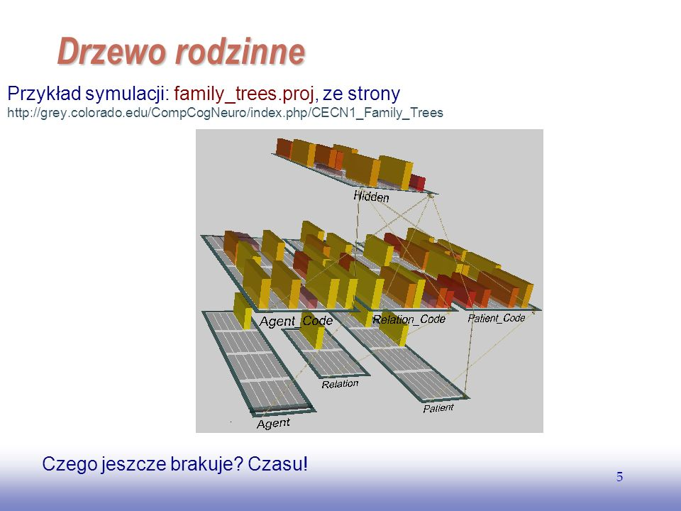 EE141 Drzewo rodzinne. Przykład symulacji: family_trees.proj, ze strony http://grey.colorado.edu/CompCogNeuro/index.php/CECN1_Family_Trees.