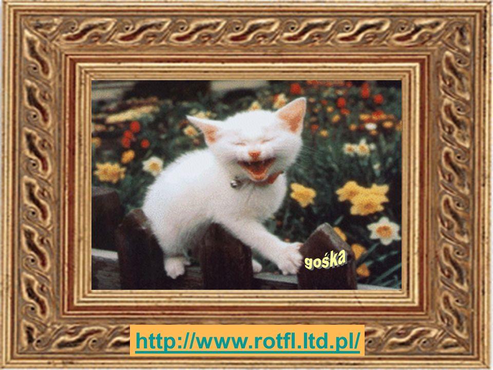 gośka http://www.rotfl.ltd.pl/