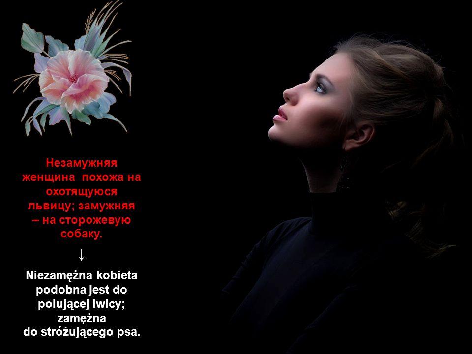 Незамужняя женщина похожа на охотящуюся львицу; замужняя – на сторожевую собаку. ↓