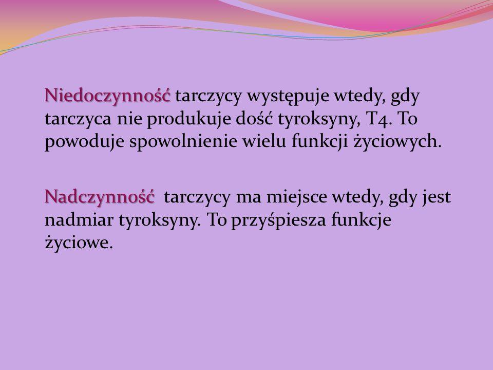 Niedoczynność tarczycy występuje wtedy, gdy tarczyca nie produkuje dość tyroksyny, T4.