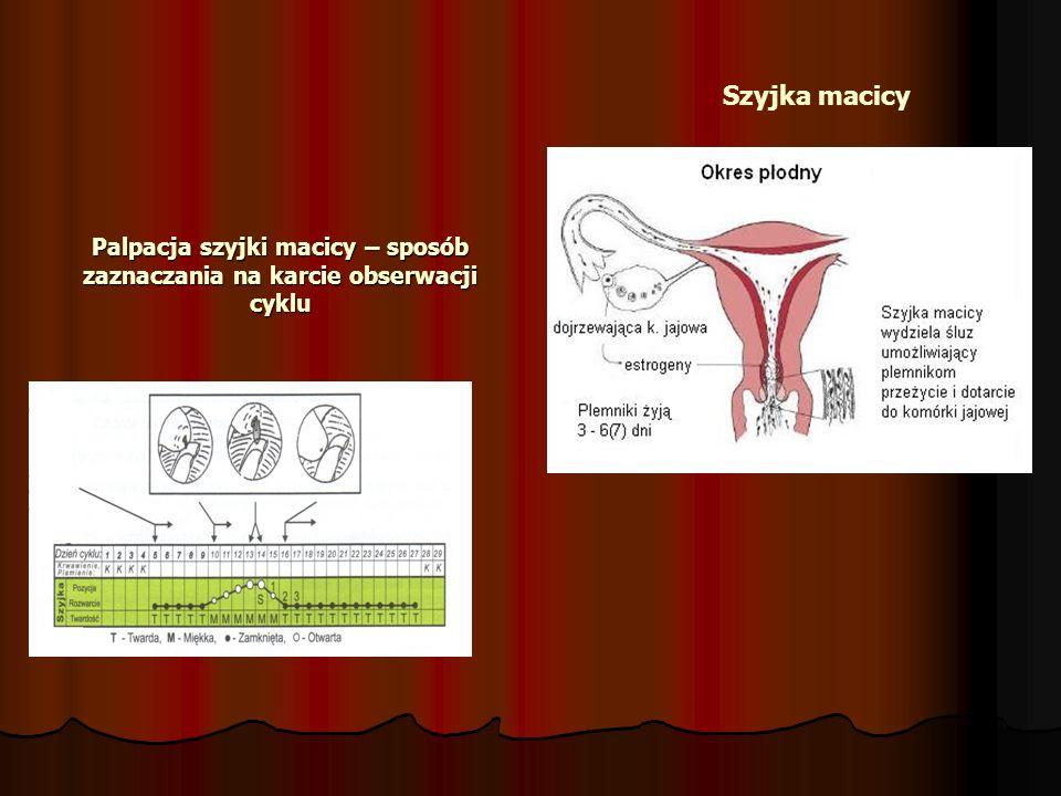 Palpacja szyjki macicy – sposób zaznaczania na karcie obserwacji cyklu