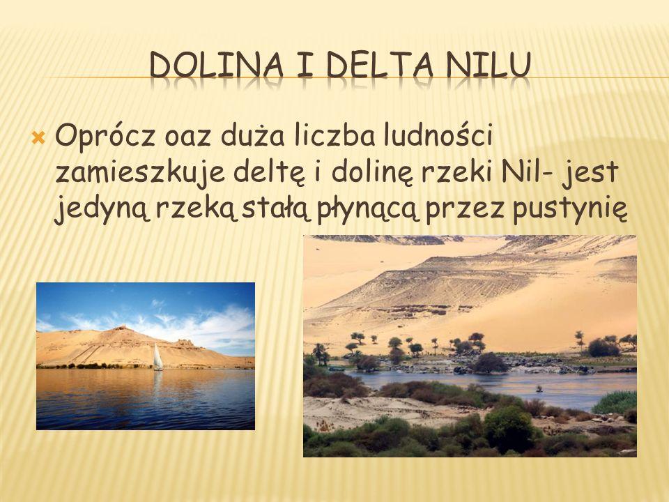 Dolina i delta nilu Oprócz oaz duża liczba ludności zamieszkuje deltę i dolinę rzeki Nil- jest jedyną rzeką stałą płynącą przez pustynię.