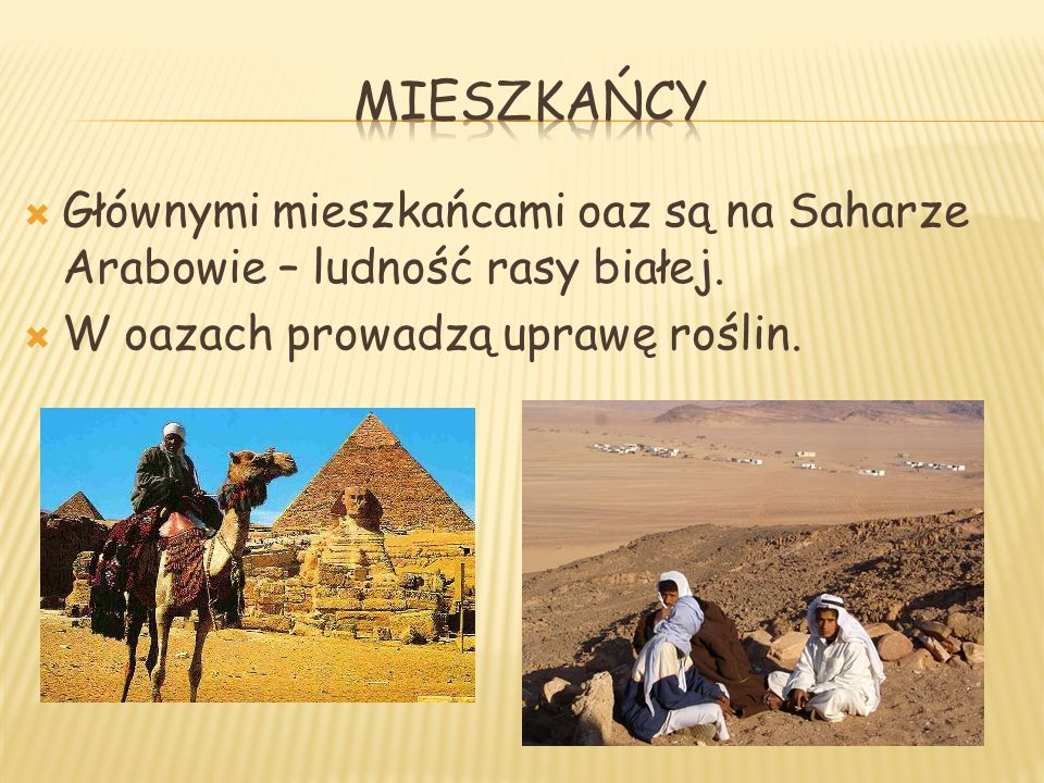 mieszkańcy Głównymi mieszkańcami oaz są na Saharze Arabowie – ludność rasy białej.