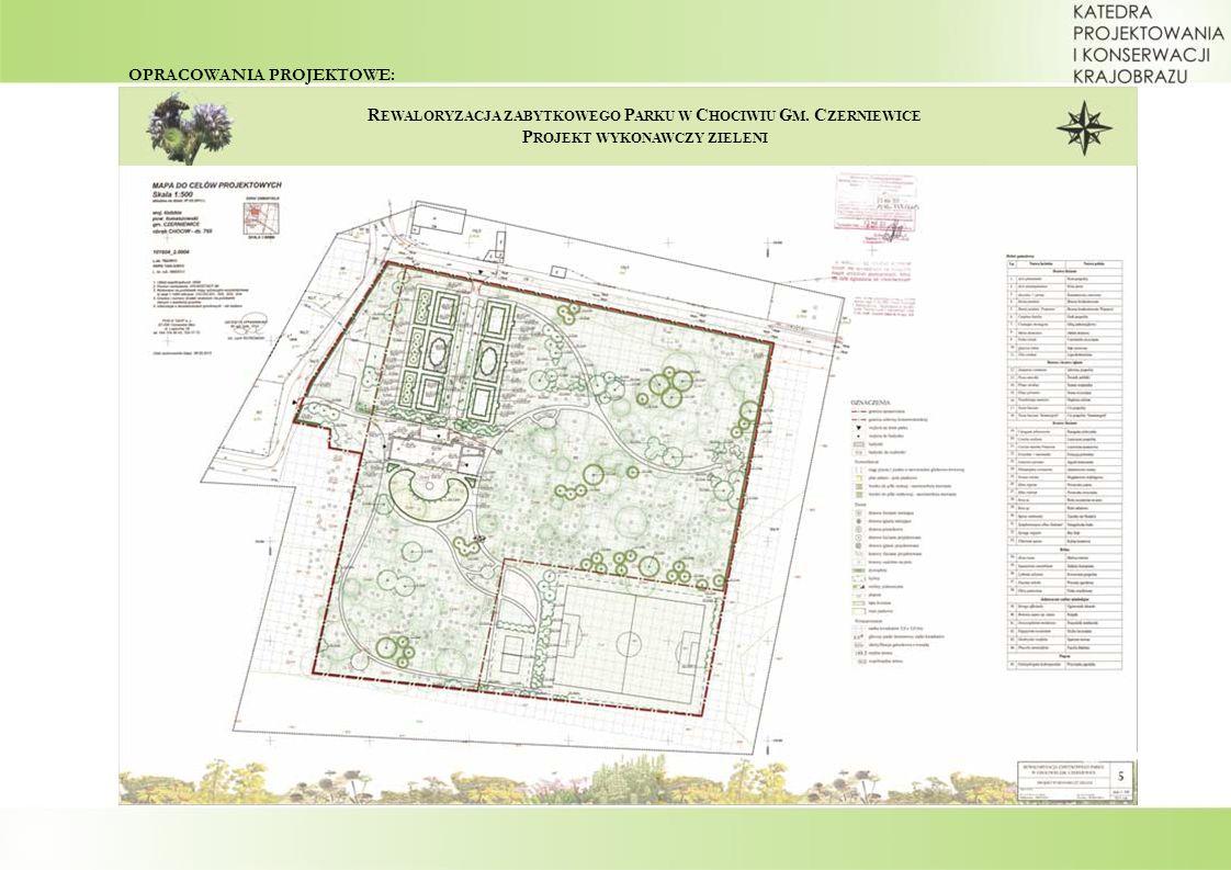 Projekt wykonawczy zieleni