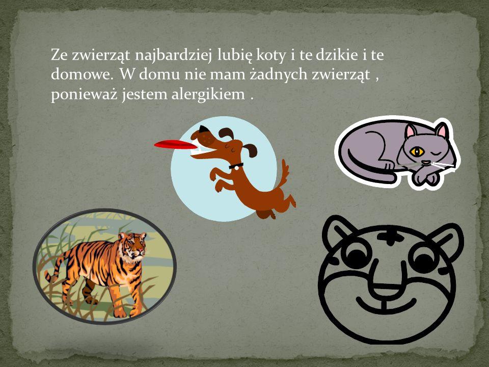 Ze zwierząt najbardziej lubię koty i te dzikie i te domowe