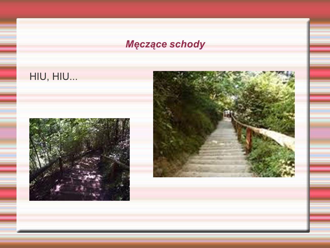 Męczące schody HIU, HIU...