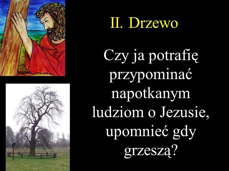 II. Drzewo Czy ja potrafię przypominać napotkanym ludziom o Jezusie, upomnieć gdy grzeszą