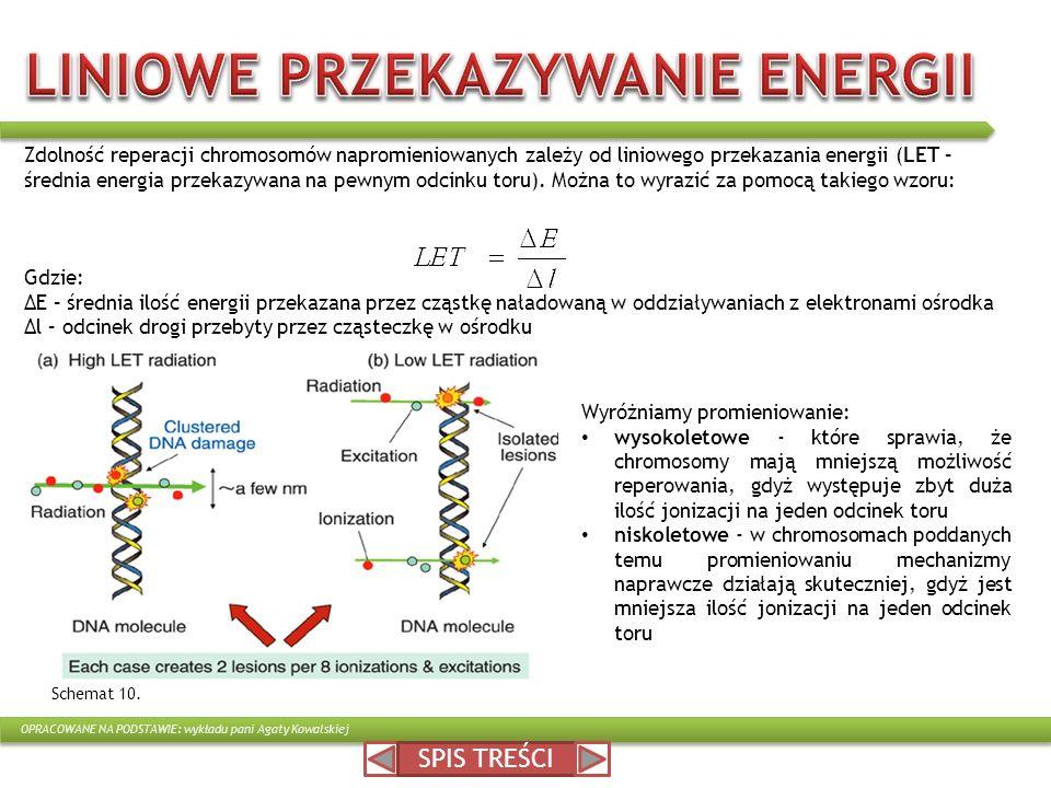 LINIOWE PRZEKAZYWANIE ENERGII
