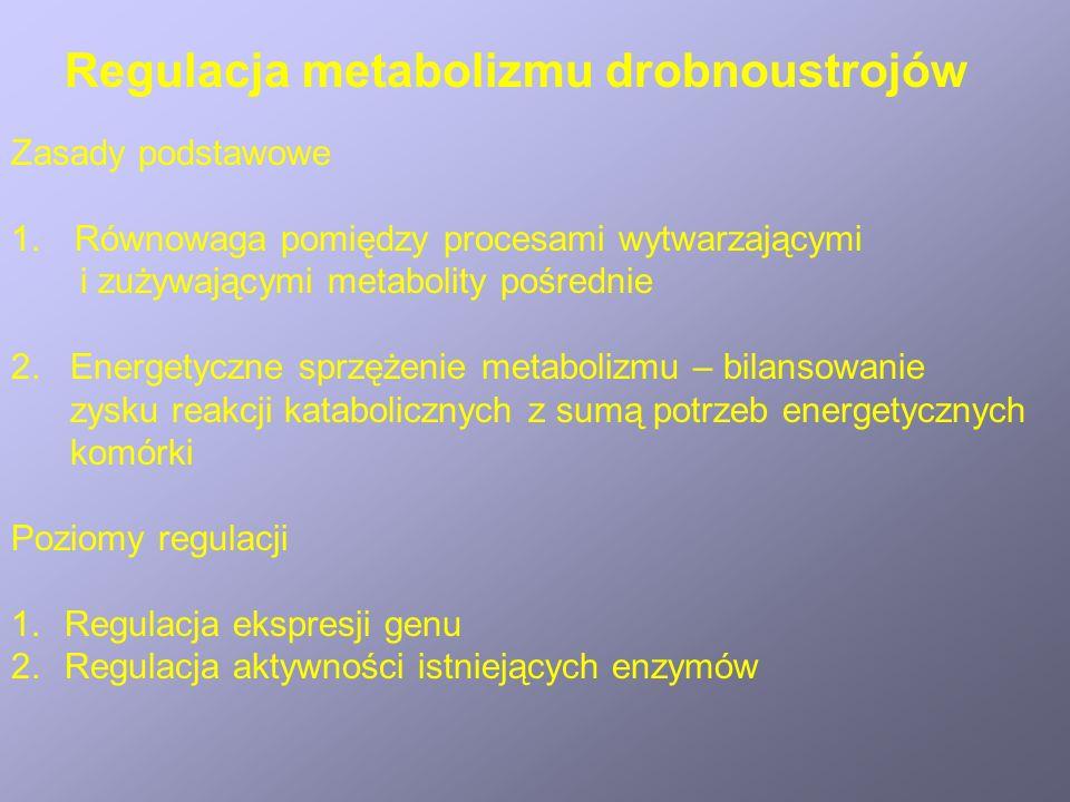 Regulacja metabolizmu drobnoustrojów