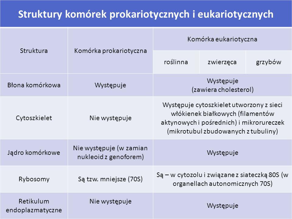 Struktury komórek prokariotycznych i eukariotycznych