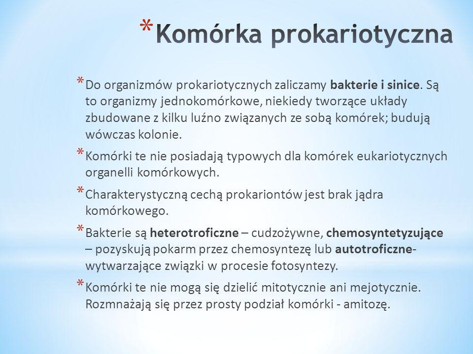 Komórka prokariotyczna