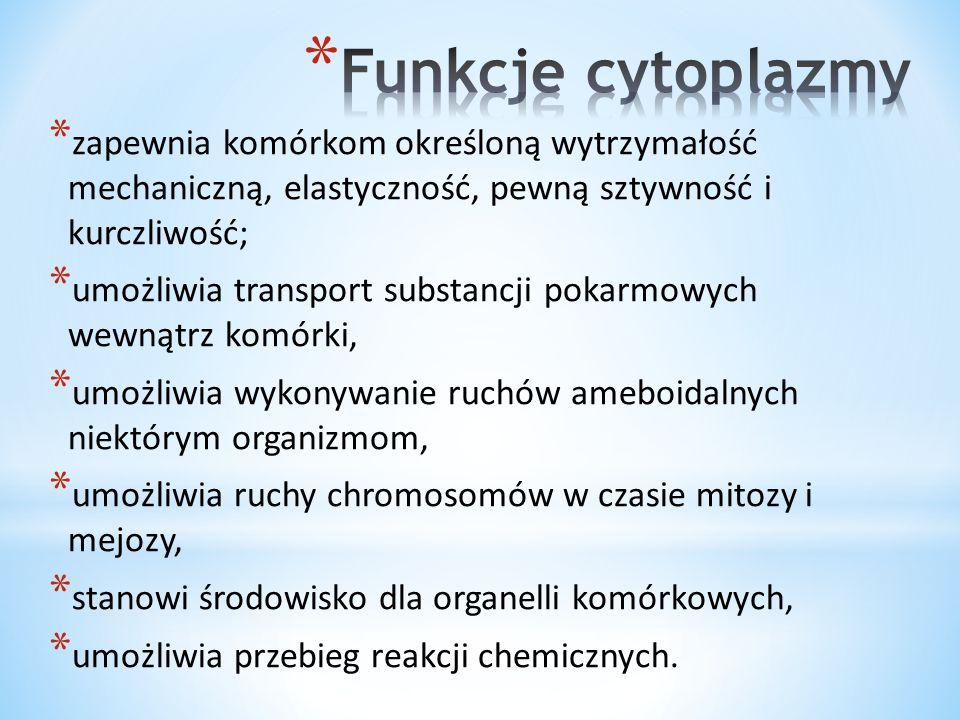 Funkcje cytoplazmy zapewnia komórkom określoną wytrzymałość mechaniczną, elastyczność, pewną sztywność i kurczliwość;