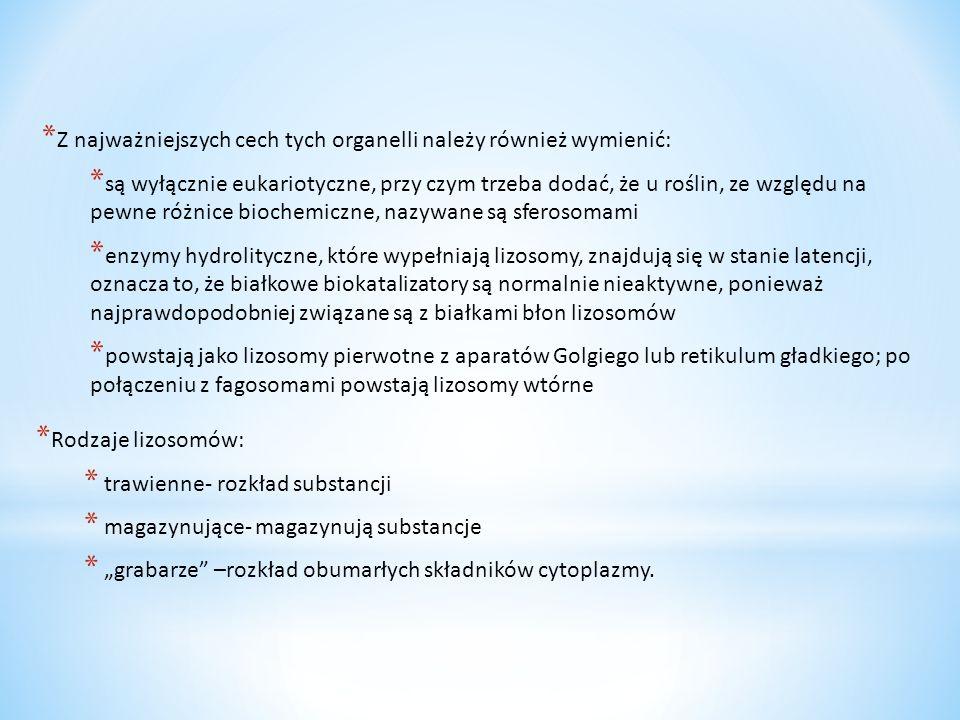 Z najważniejszych cech tych organelli należy również wymienić: