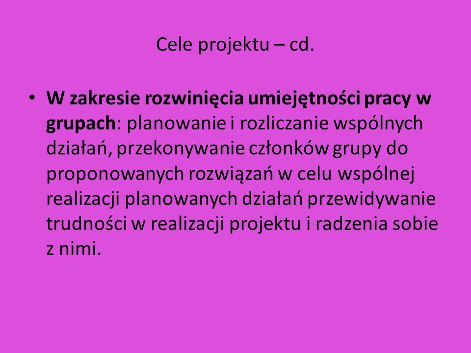 Cele projektu – cd.