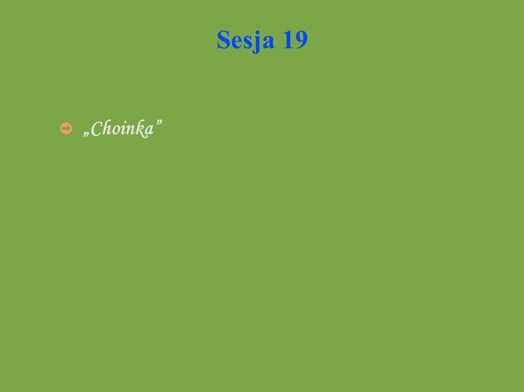 "Sesja 19 ""Choinka"