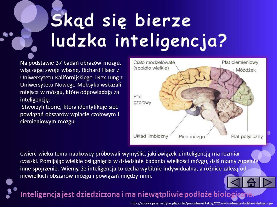 Skąd się bierze ludzka inteligencja