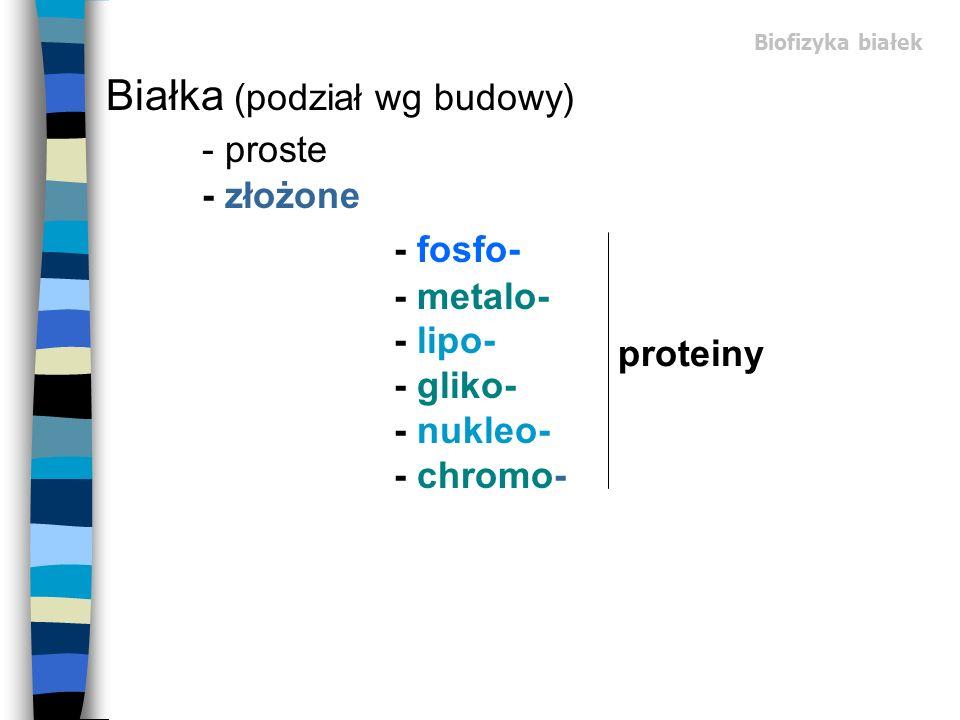 Białka (podział wg budowy) - proste - złożone
