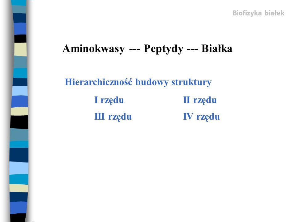 Aminokwasy --- Peptydy --- Białka