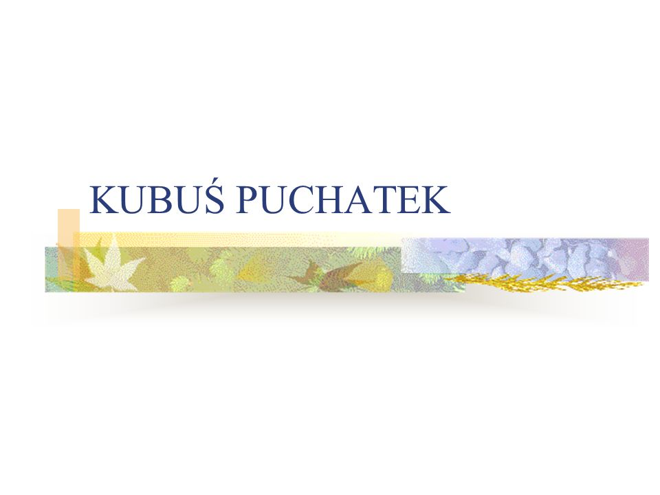 KUBUŚ PUCHATEK
