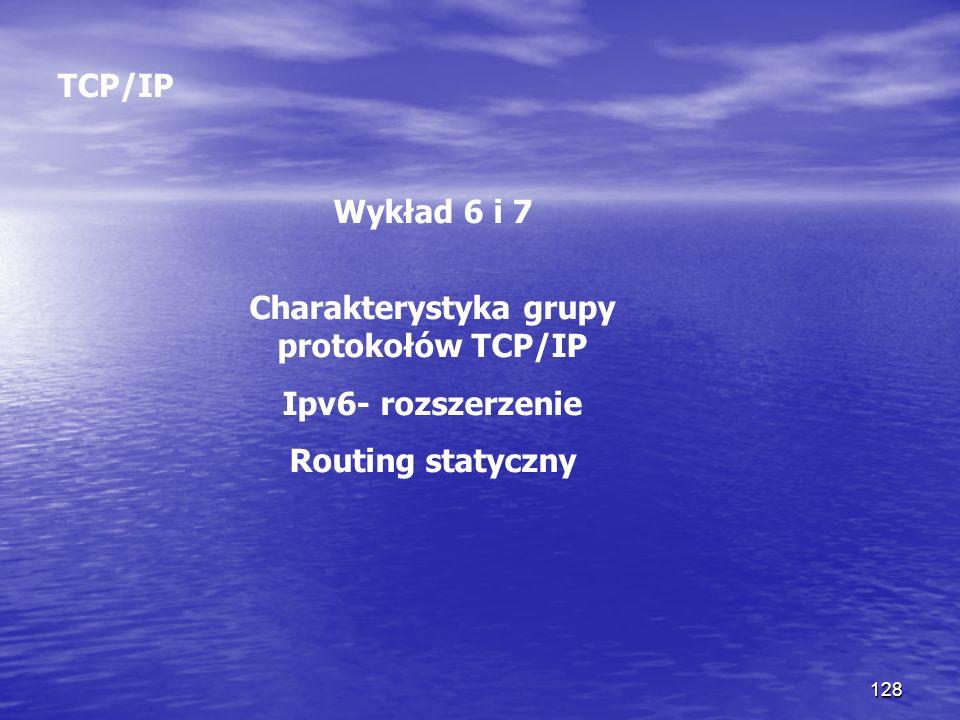 Charakterystyka grupy protokołów TCP/IP