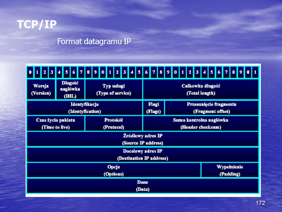 TCP/IP Format datagramu IP