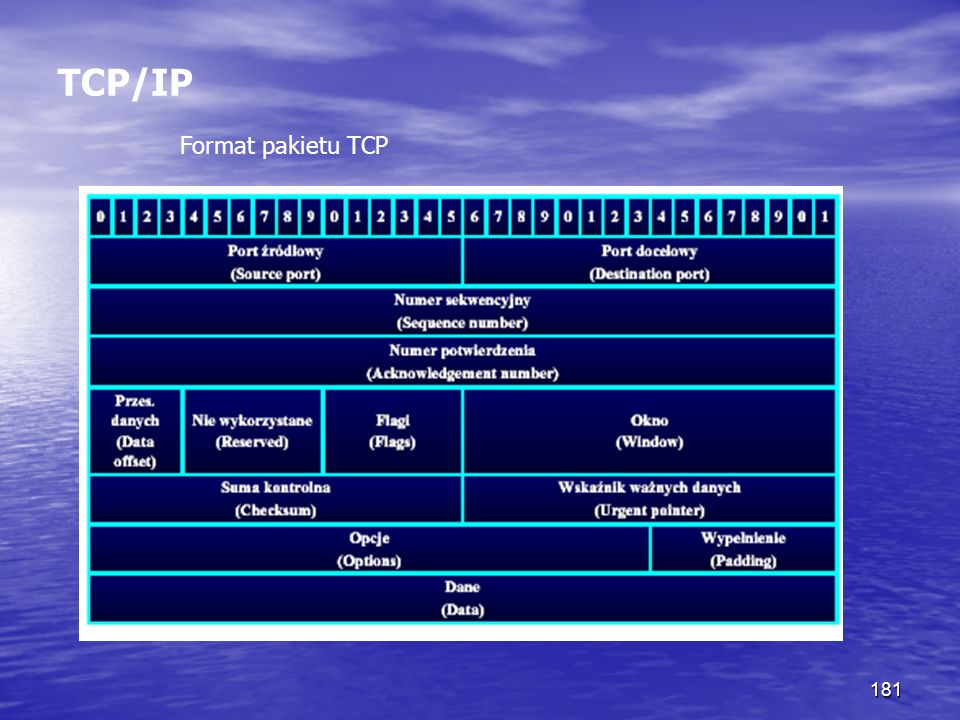 TCP/IP Format pakietu TCP