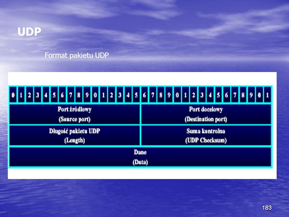 UDP Format pakietu UDP