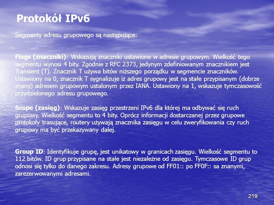 Protokół IPv6 Segmenty adresu grupowego są następujące: