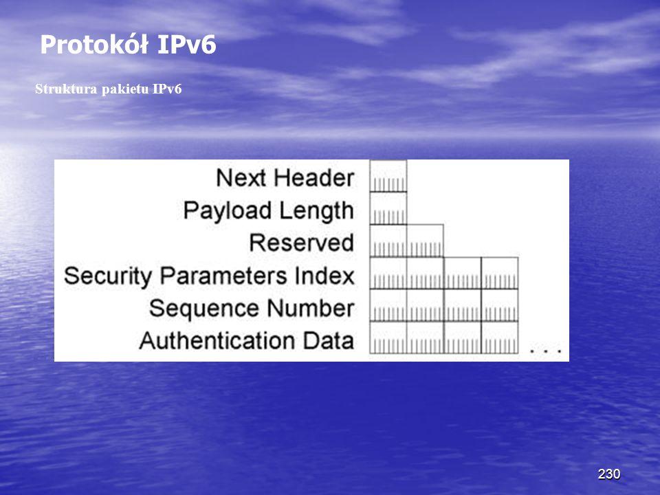 Protokół IPv6 Struktura pakietu IPv6.