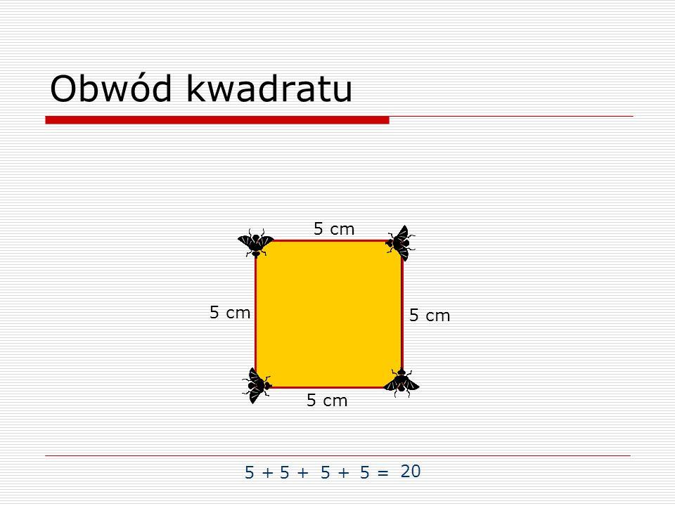 Obwód kwadratu 5 cm 5 cm 5 cm 5 cm 5 + 5 + 5 + 5 = 20