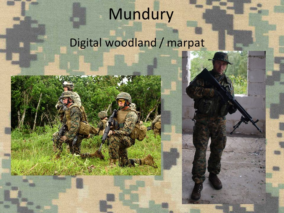 Mundury Digital woodland / marpat
