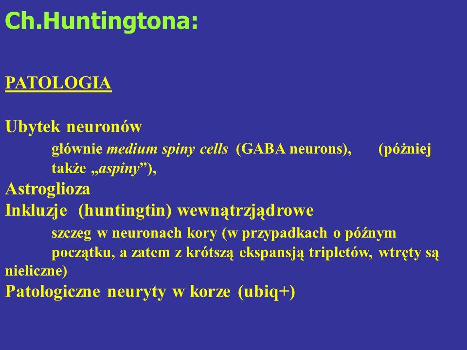 Ch.Huntingtona: PATOLOGIA Ubytek neuronów
