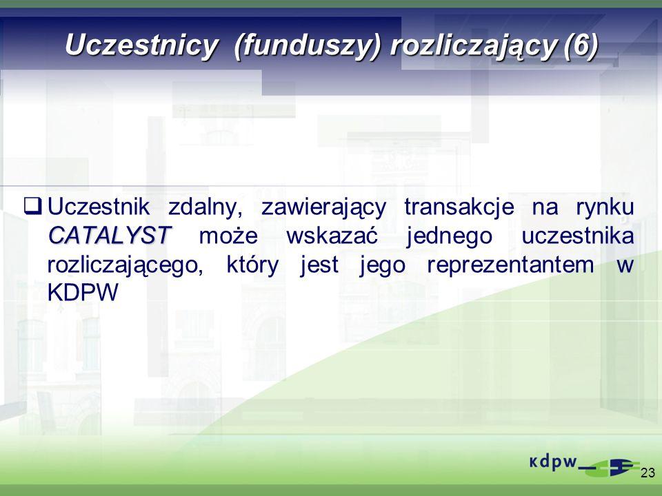 Uczestnicy (funduszy) rozliczający (6)