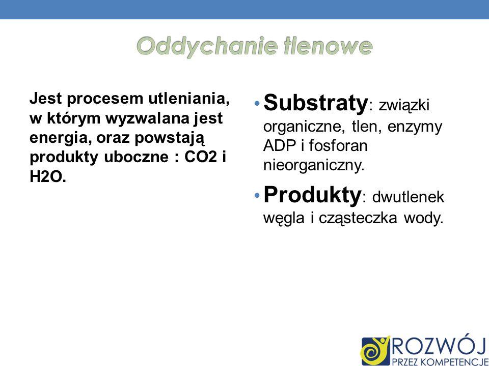 Produkty: dwutlenek węgla i cząsteczka wody.