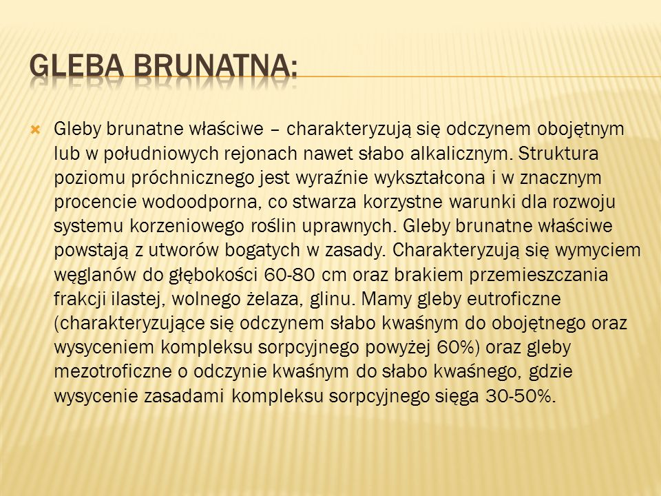 Gleba Brunatna: