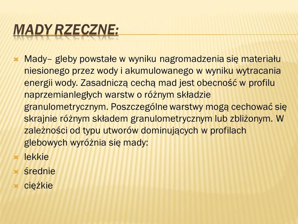 Mady Rzeczne: