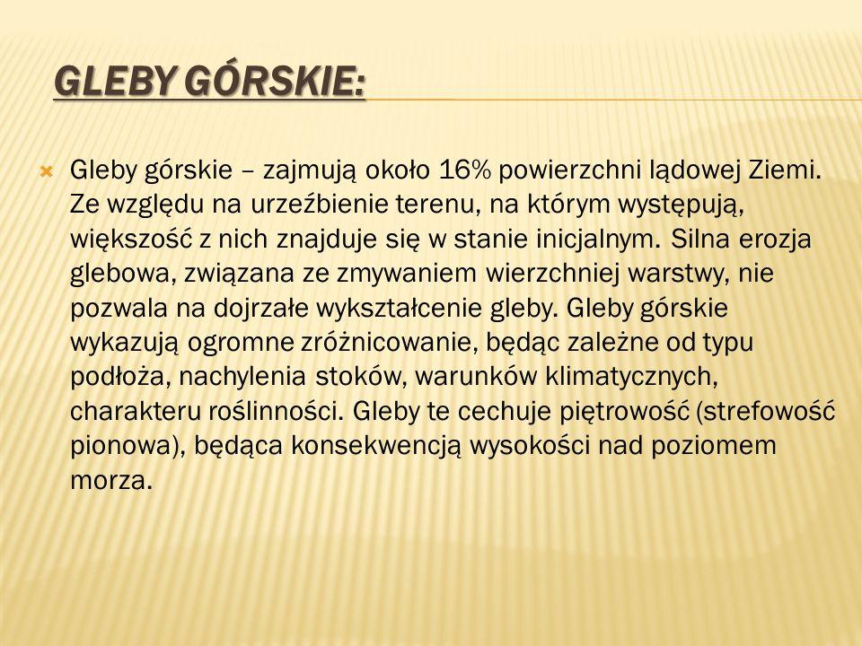 Gleby Górskie: