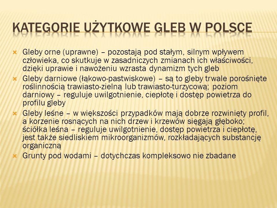 Kategorie użytkowe gleb w Polsce
