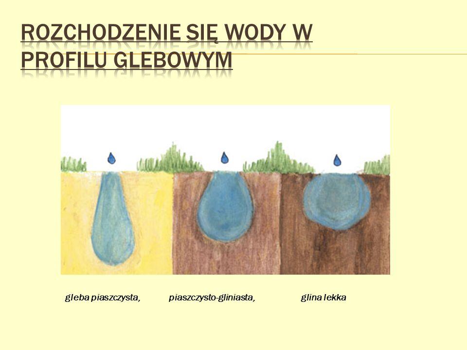 Rozchodzenie się wody w profilu glebowym